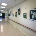 Esprit Omaha Senior Living Community To Showcase Emerging Artists